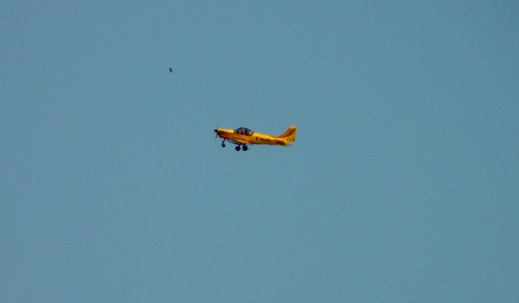 Vol à voile Dscn0724