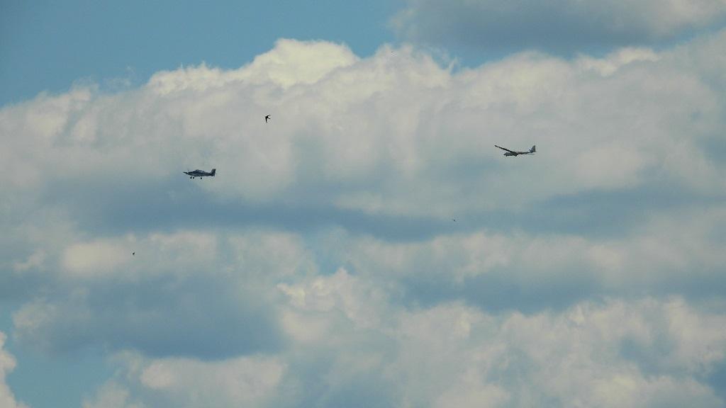 Avions Dscn3314