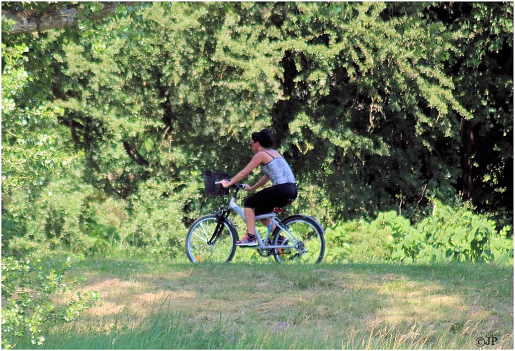 Bicyclettes Img_1321
