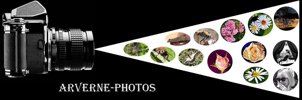 Arverne-Photos