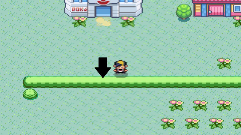 Bugs Pokemon Reloaded Beta 17 Sin_tz10