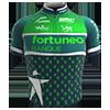 Aanvraag en plaatsingtopic shirts Fortun10