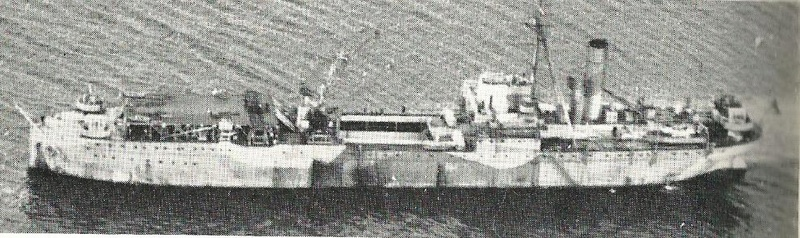 Petite histroire des porte-avions d'escorte - 1915-1945 - Page 3 Hms_pe10