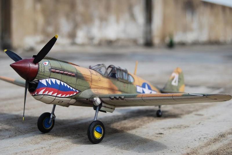 Curtiss P-40 Warhawk (l'échelle à peu pres de 1/25)  Dsc_0310