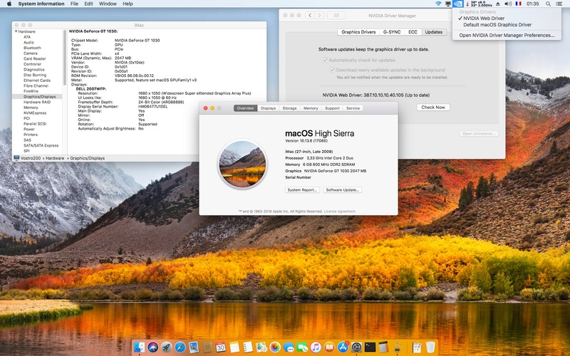 Web Drivers 10.13 macOS High Sierra NVIDIA GeForce GT 1030 - Page 3 Gt103010