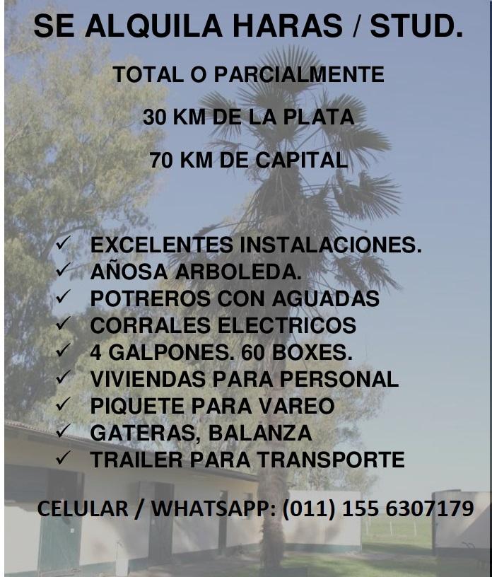 ALQUILER HARAS / CENTRO DE ENTRENAMIENTO Aviso-11