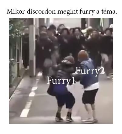 2. Mém készítő verseny Furry10