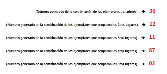 CRITERIO GENERADOR DE RESULTADOS - HIPISMO Cgr_hi12