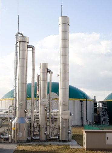 La Biomasse est-elle polluante ? Durable ? Utile ? Fig010