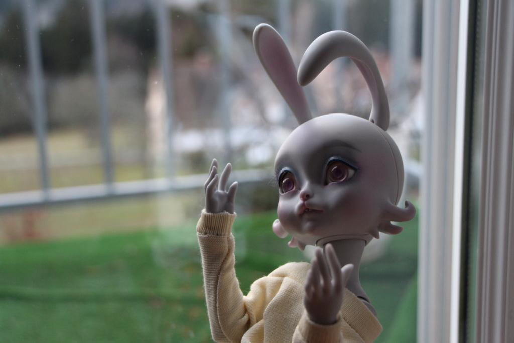 {RECHERCHE} - Youpladoll, PukiFee, Lillycat, Depths Dolls Img_6512