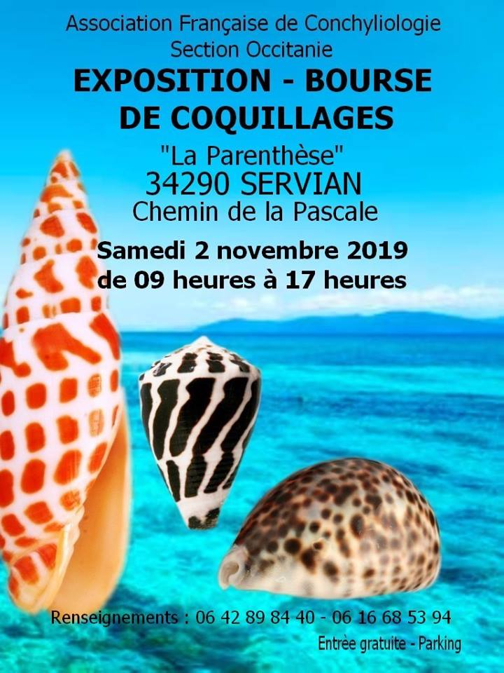 Bourse d'Occitanie - Servian - 02 Novembre 2019 Servia10