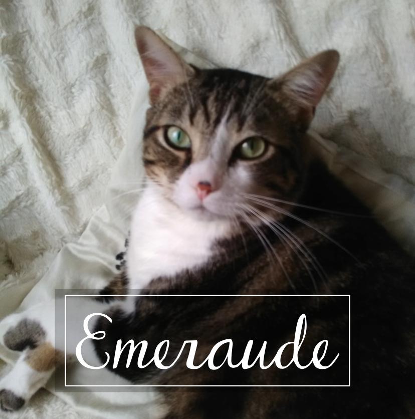 EMERAUDE Emerau10
