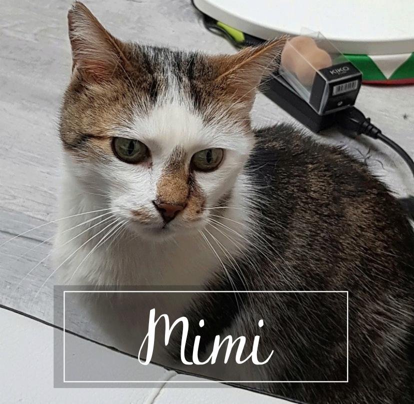 MIMI Mimi1910