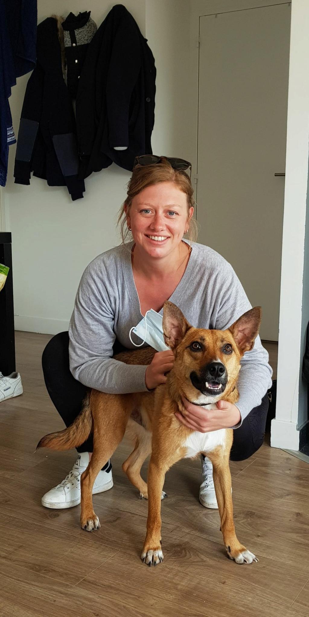 RIO / ASTRAL, chien mâle marron et blanc de 2 ans - Marrainé par Cécilia - Réservé par Prune 16887710