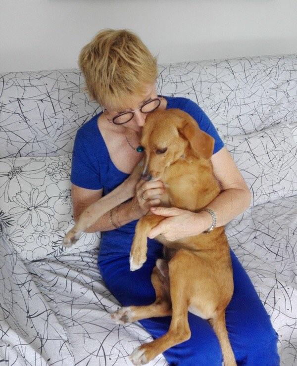 POMPOM, chien d'environ 4 ans pour 10 kg Pompom19