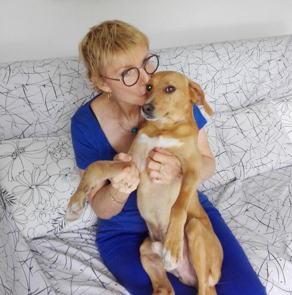 POMPOM, chien d'environ 4 ans pour 10 kg Pompom20
