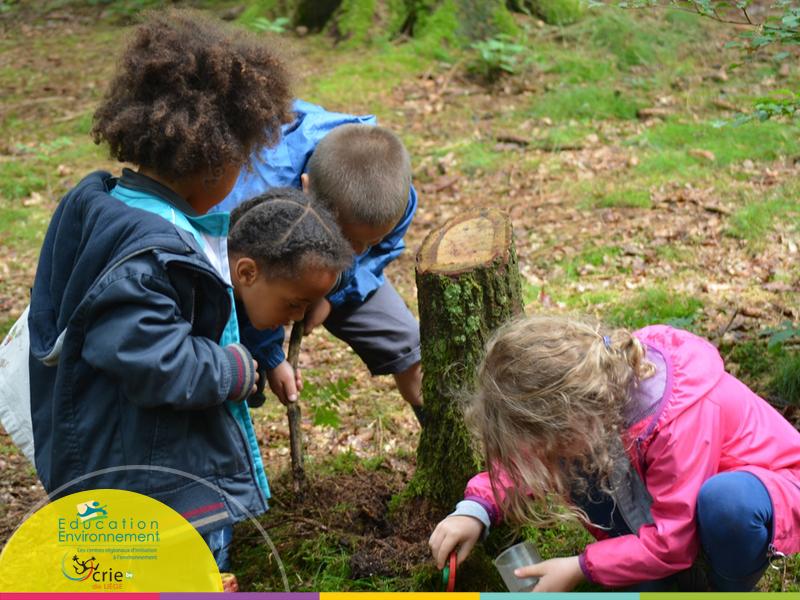 اليوم الدولي للغابات 22 مارس...لنعش القسم خارج المدرسة بين أحضان الطبيعة. Dehors19