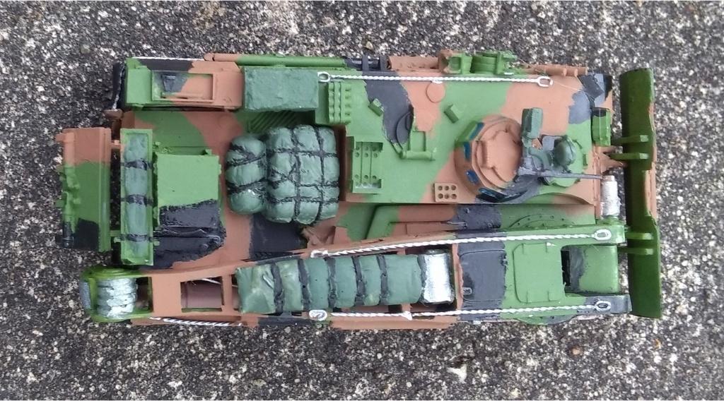 """AMX30D """"dépannage"""" WSW au 1/72 ème Img_1188"""