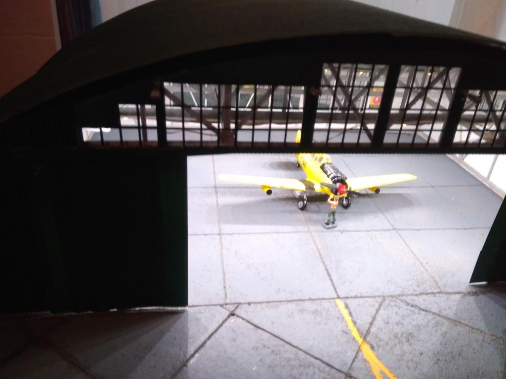 Des ailes et un peu de roues .. Img_2051