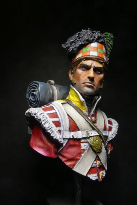 Napoléon le stratège P1030411