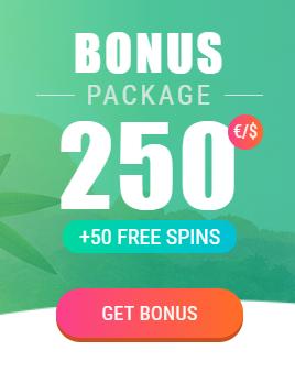 spinia bonus package infos