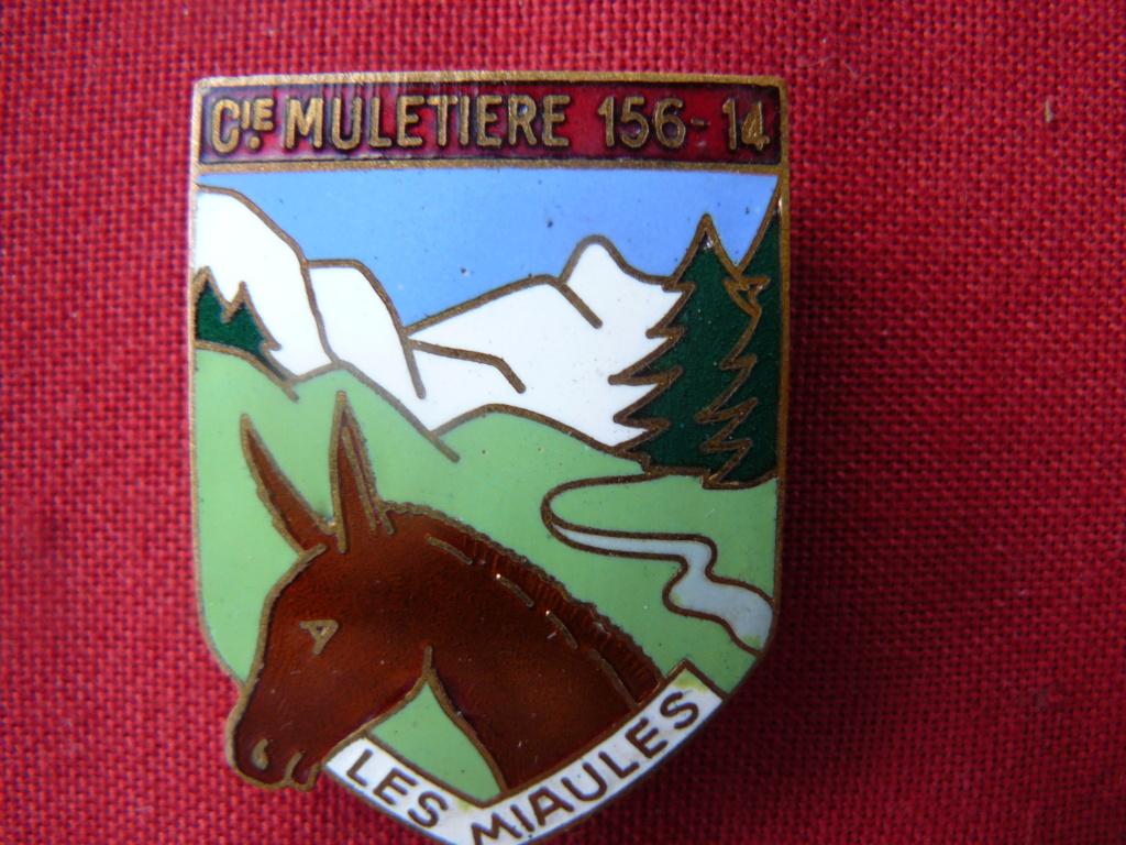 Au secours pour identifier des insignes de régiments 1939/1940 P1160819
