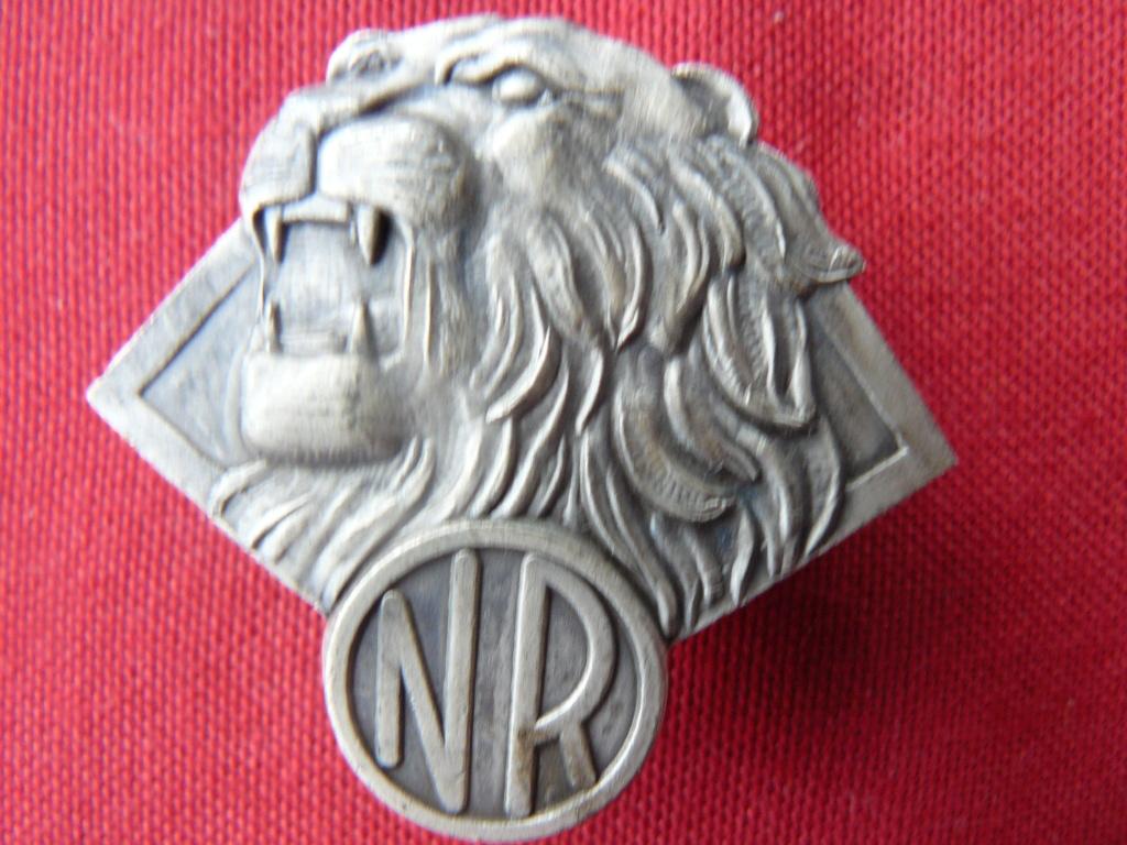 Nouvel insigne rebel à l'identification P1160845
