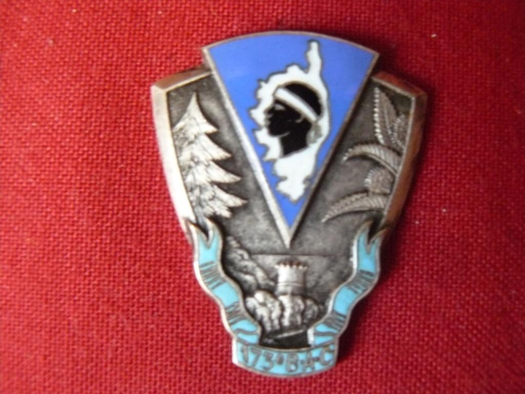 Nouvel insigne rebel à l'identification P1160946