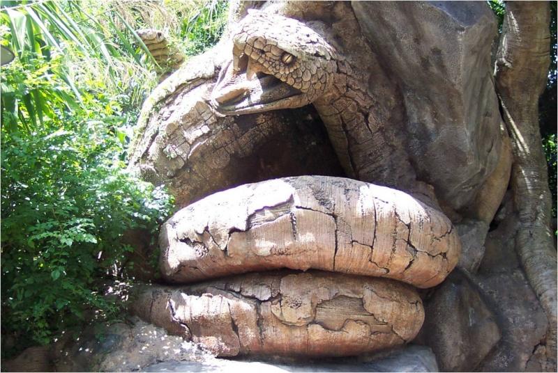 l'arbre de Noé au Mozambique Noa1610