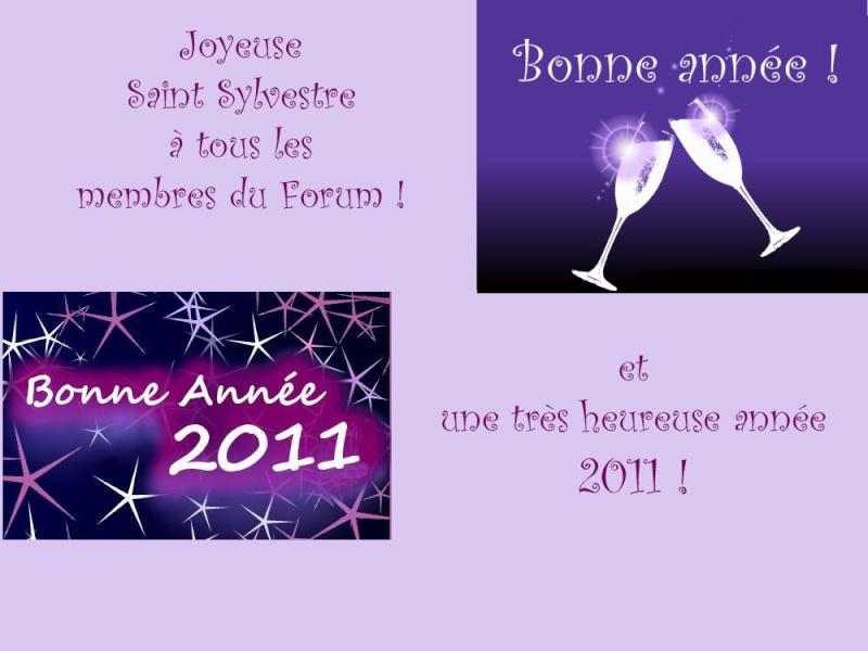Bonne Année 2011 à tous et toutes Bonnea10
