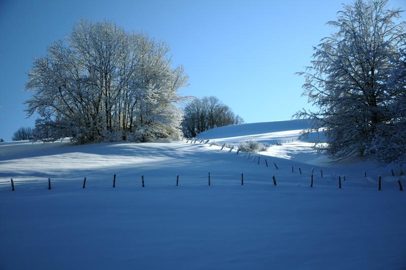 (photos hiver 2009/2010 ] postez ici Nik_4110