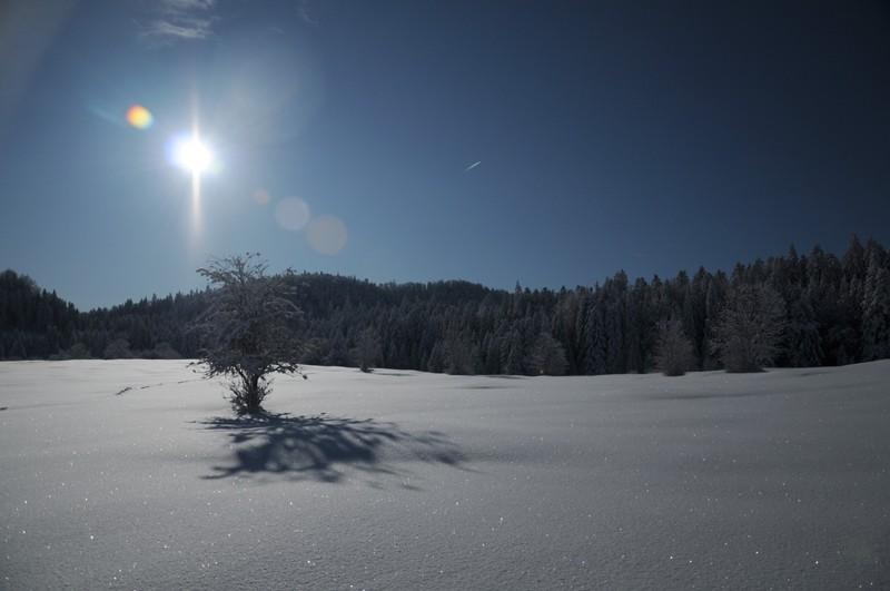 (photos hiver 2009/2010 ] postez ici Nik_4111