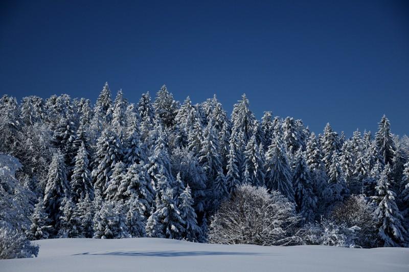 (photos hiver 2009/2010 ] postez ici Nik_4112
