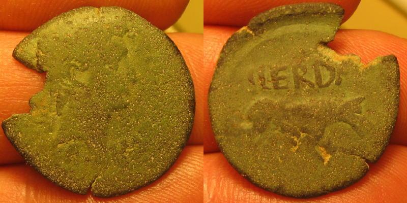 Bronze CERDA ou HERDA au loup Dt_96610