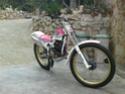 Honda RTL 250S año 1987 Dsc07510