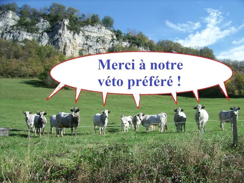 Rando Midi-Pyrénées, 13-14 novembre 2010 - Page 2 Vato10
