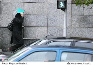 Spring in Tehran B1010