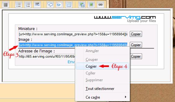 Tutoriel pour héberger une image Screen14
