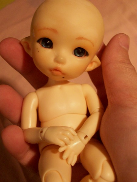 Galerie de vos dolls chauves 100_7611