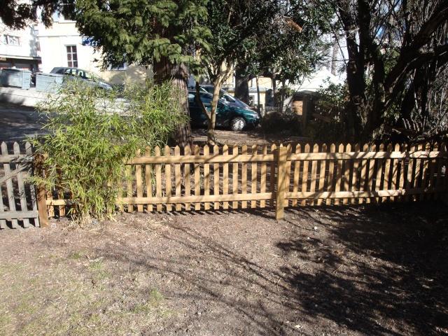 Mon jardin en construction Dsc01111