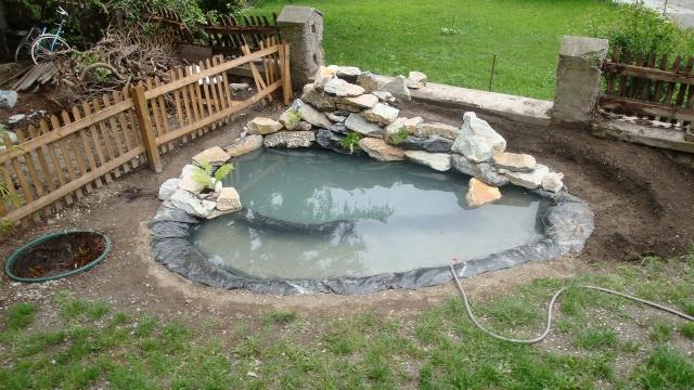 Mon jardin en construction Dsc01224