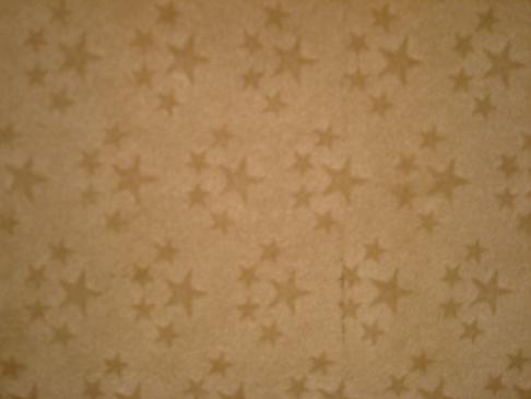 Plancha virgen de papel Chino Dsc00216