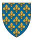 Pozdravy nových členů France10