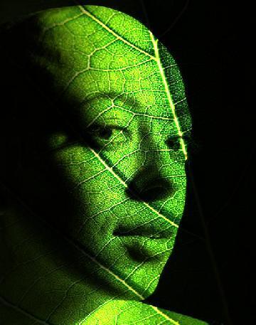 Fotomanipulaciones y arte digital Desde_10