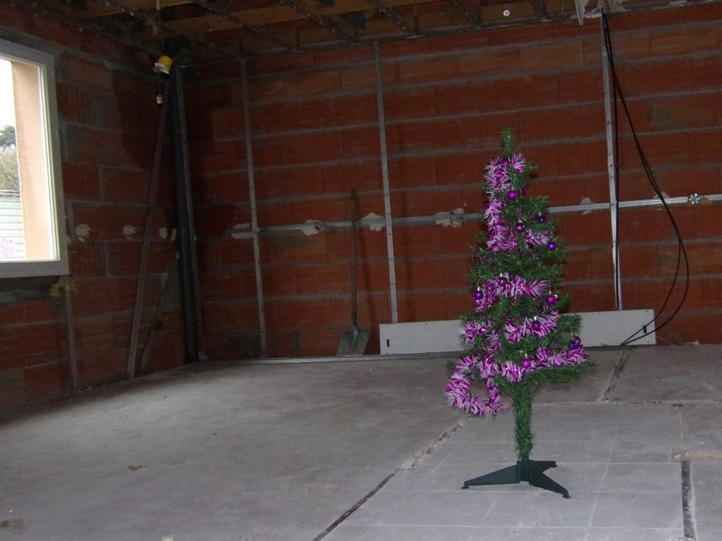 Vos décorations de Noël... 105_0315
