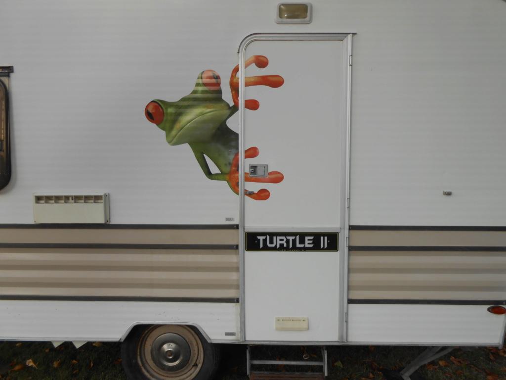 TURTLE II Dscn3123