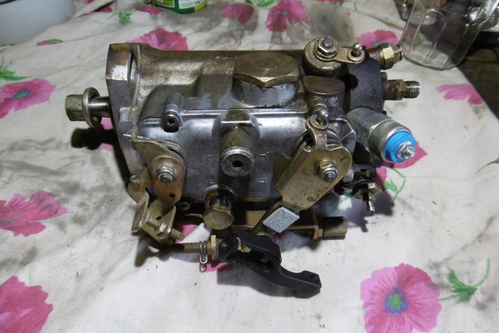BRUNO P1000405