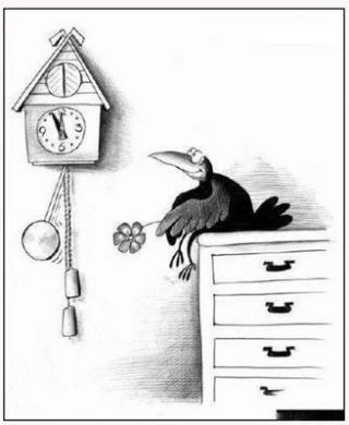 Humour en image - Page 43 Coucou10