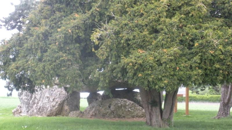 Megalithe - Loire Dscn3013
