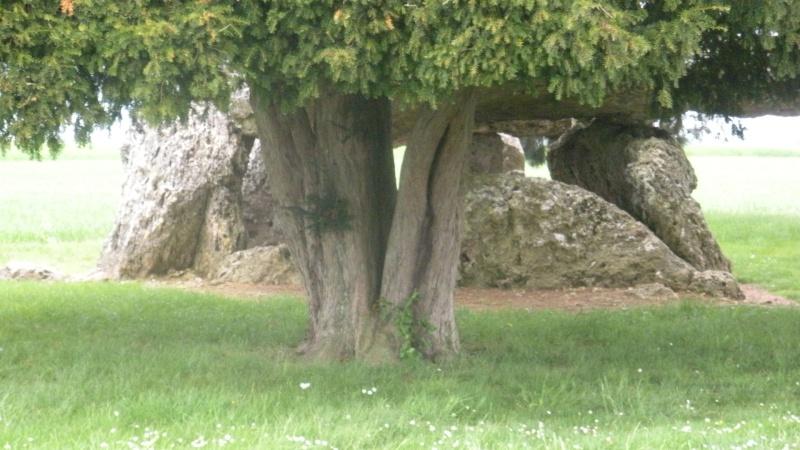 Megalithe - Loire Dscn3017